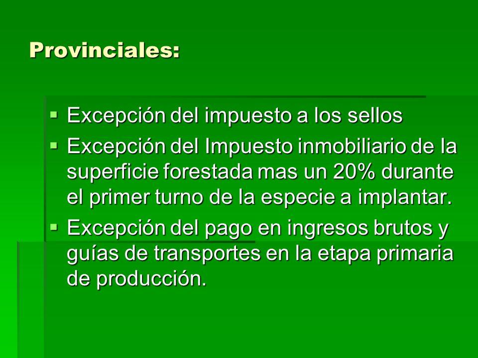 Provinciales: Excepción del impuesto a los sellos.