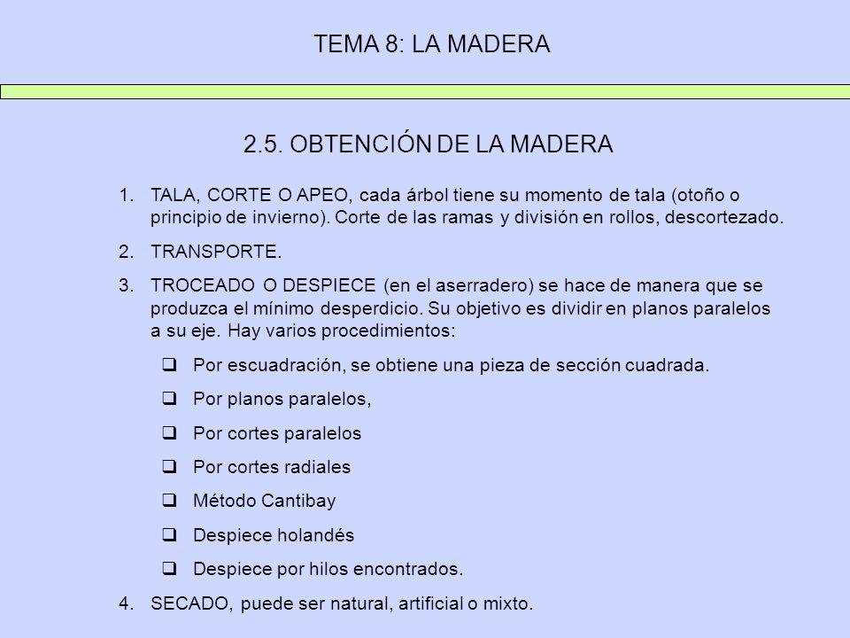 TEMA 8: LA MADERA 2.5. OBTENCIÓN DE LA MADERA