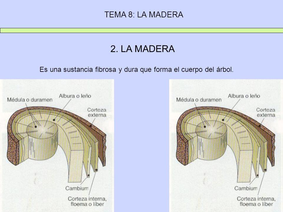 2. LA MADERA TEMA 8: LA MADERA