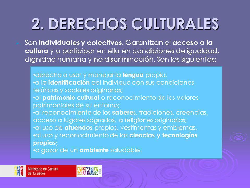 2. DERECHOS CULTURALES