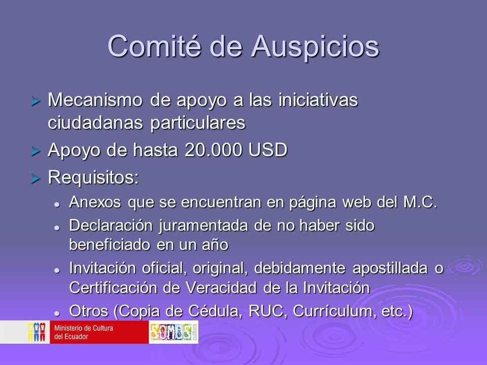 Comité de Auspicios Mecanismo de apoyo a las iniciativas ciudadanas particulares. Apoyo de hasta 20.000 USD.