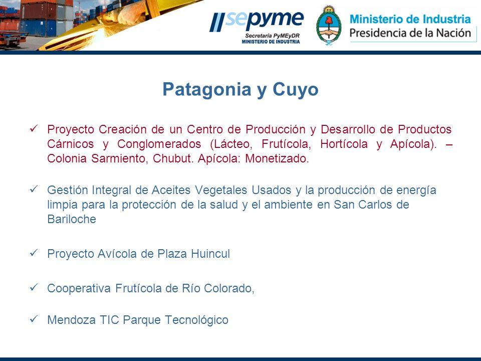 Patagonia y Cuyo
