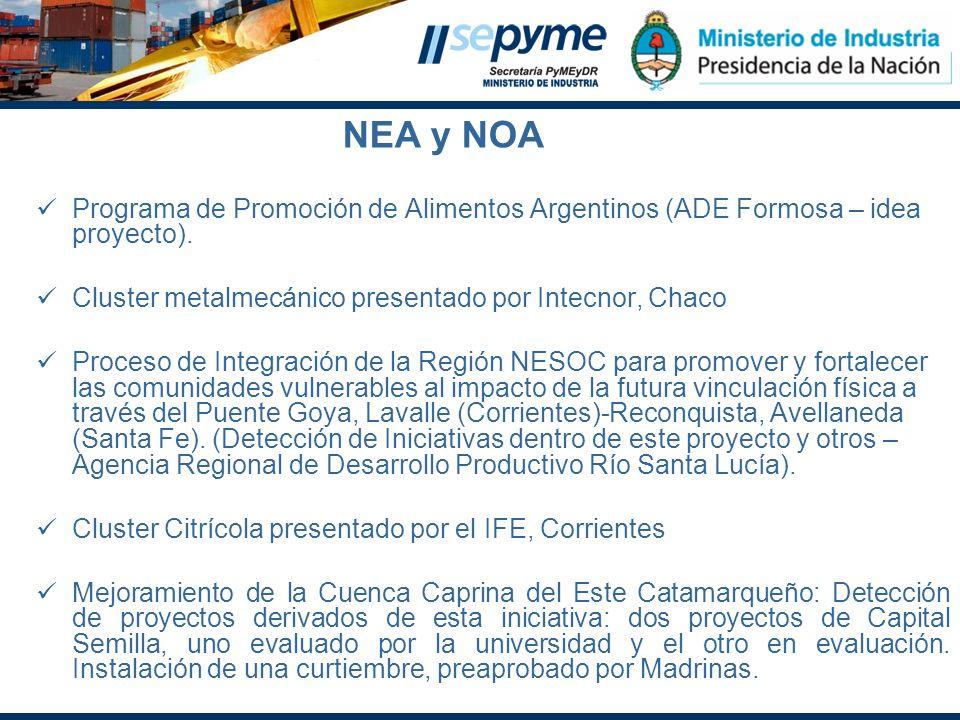 NEA y NOAPrograma de Promoción de Alimentos Argentinos (ADE Formosa – idea proyecto). Cluster metalmecánico presentado por Intecnor, Chaco.