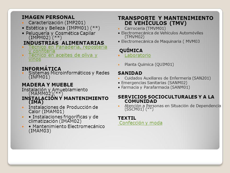 TRANSPORTE Y MANTENIMIENTO DE VEHÍCULOS (TMV)