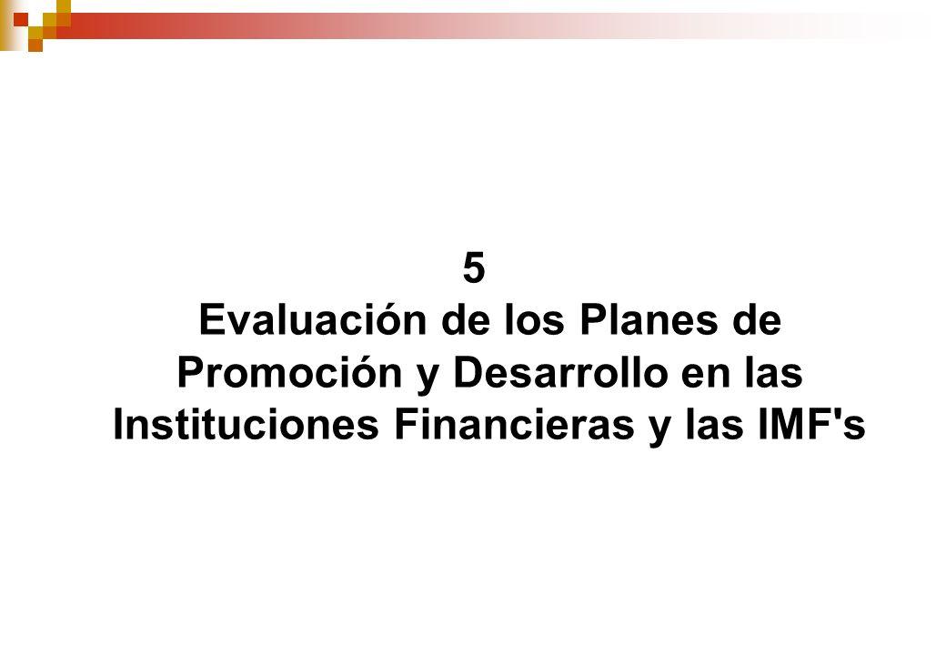 5 Evaluación de los Planes de Promoción y Desarrollo en las Instituciones Financieras y las IMF s