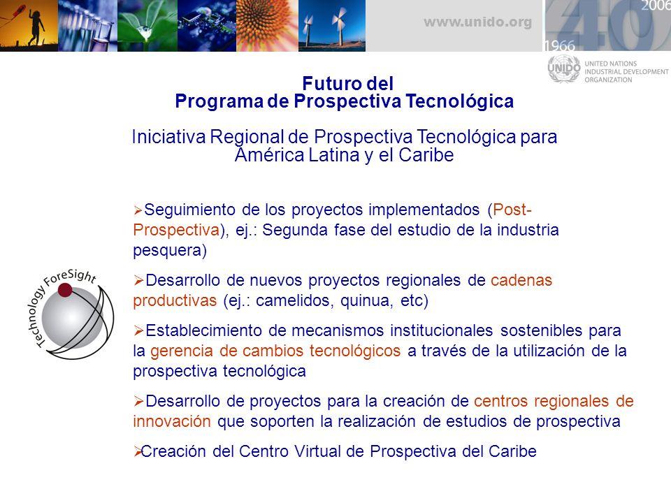Futuro del Programa de Prospectiva Tecnológica Iniciativa Regional de Prospectiva Tecnológica para América Latina y el Caribe