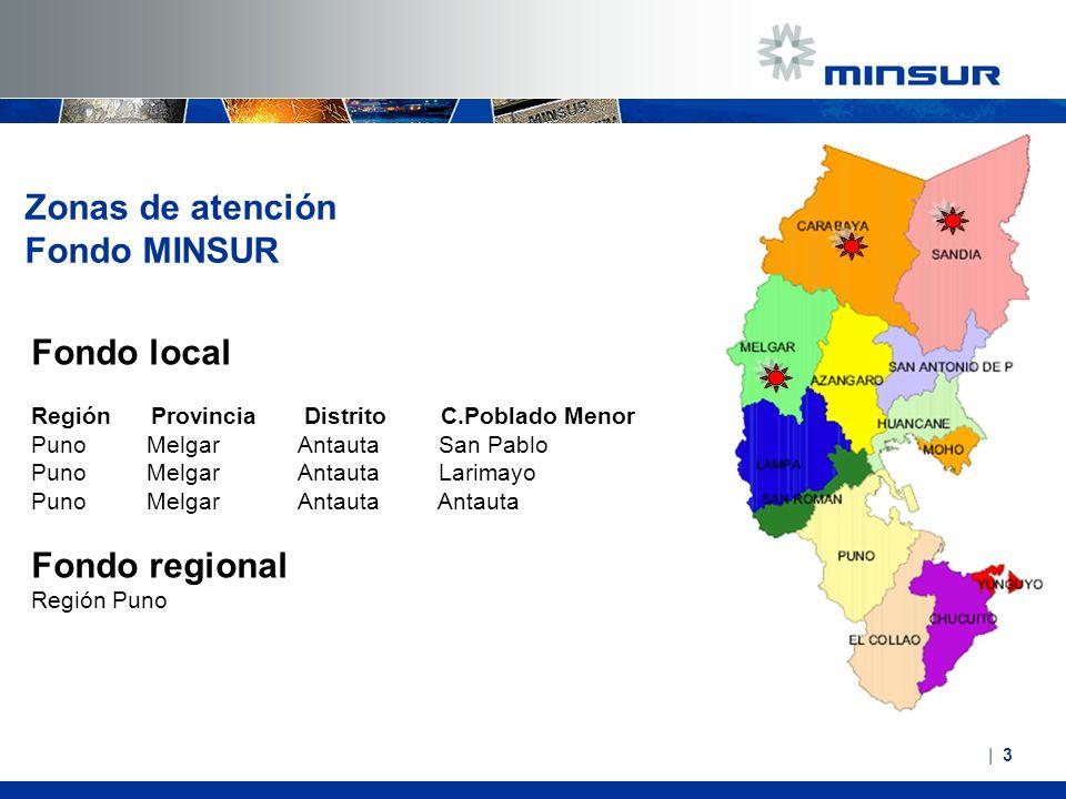 Zonas de atención Fondo MINSUR Fondo local Fondo regional