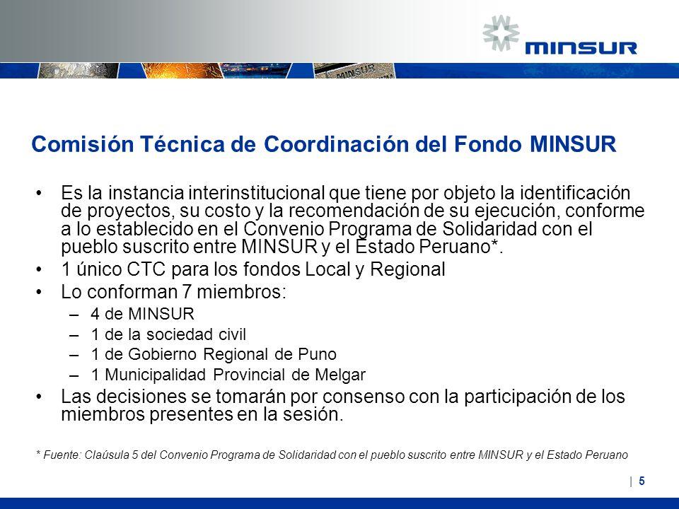 Comisión Técnica de Coordinación del Fondo MINSUR