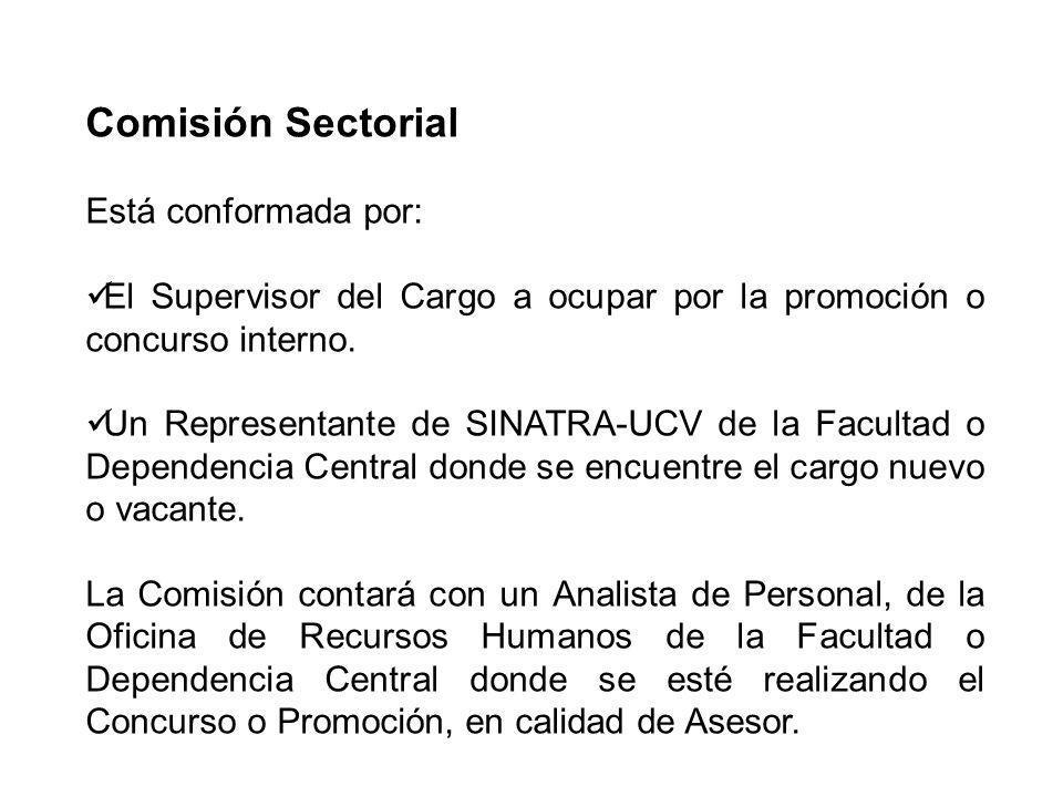 Comisión Sectorial Está conformada por: