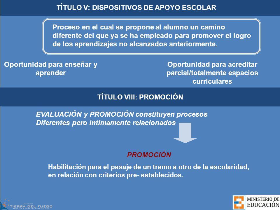 TÍTULO V: DISPOSITIVOS DE APOYO ESCOLAR
