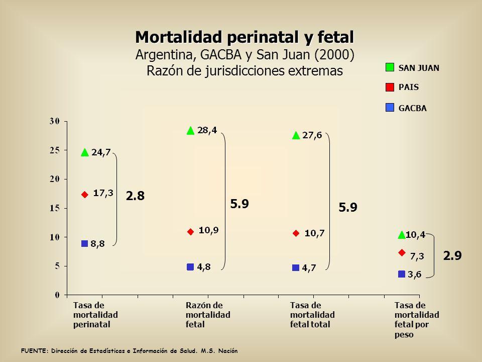 FUENTE: Dirección de Estadísticas e Información de Salud. M.S. Nación