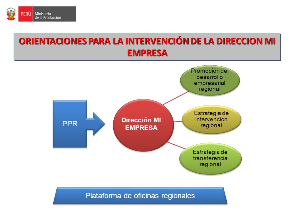 Orientaciones para la intervención de la direccion mi empresa