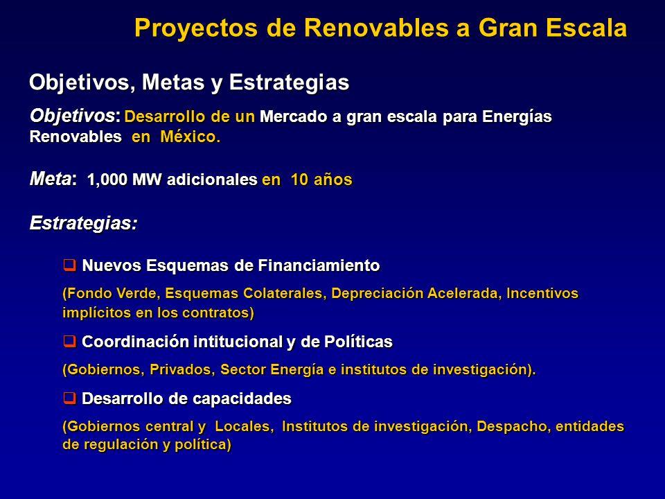 Proyectos de Renovables a Gran Escala