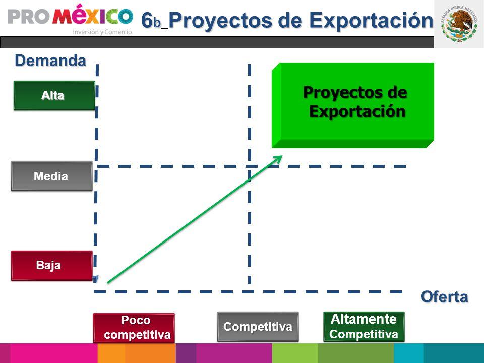 6b Proyectos de Exportación