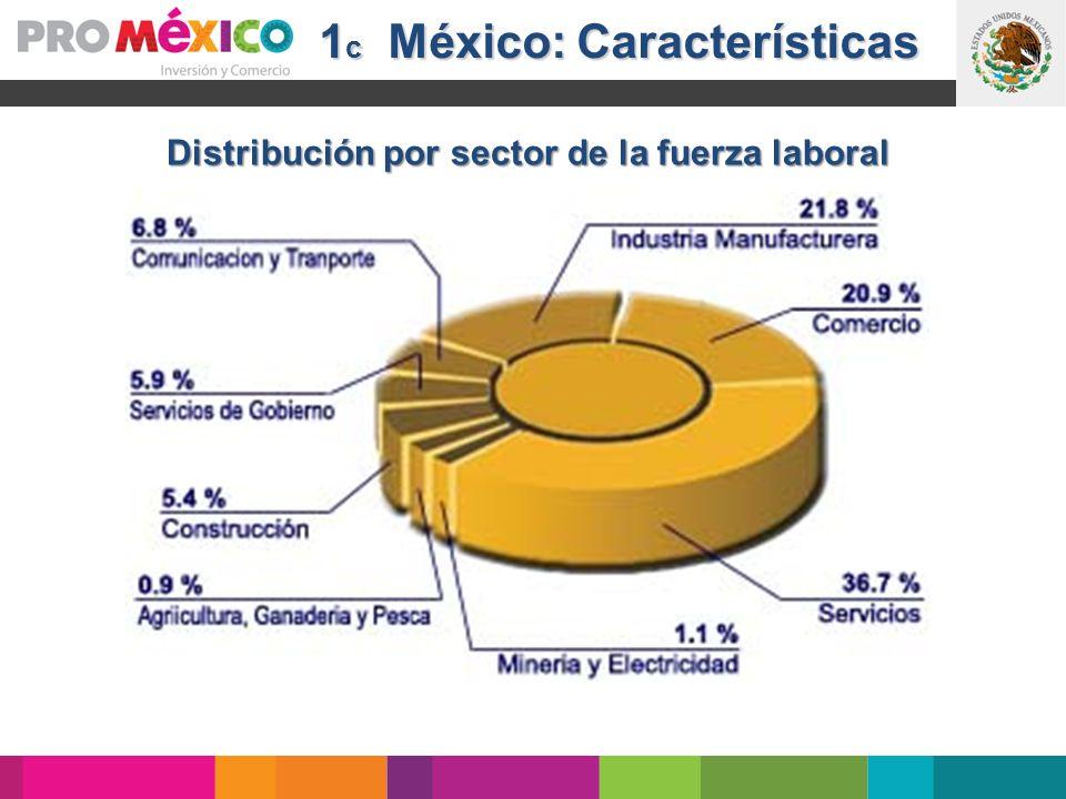 1c México: Características