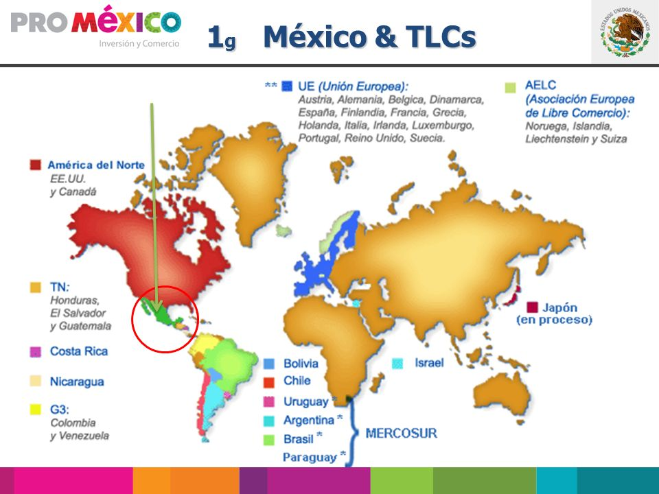 1g México & TLCs