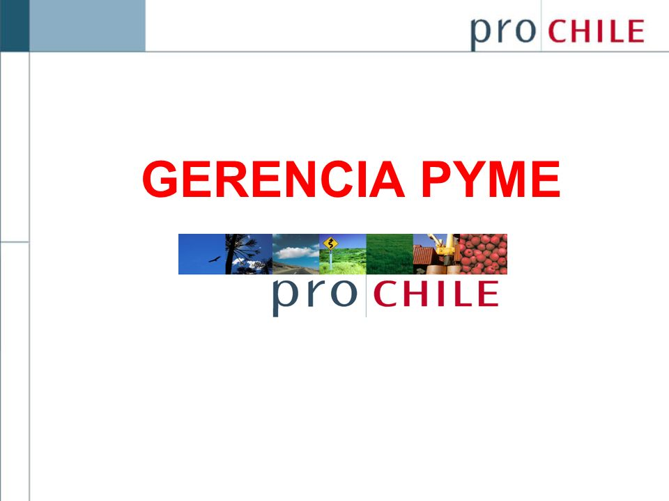GERENCIA PYME