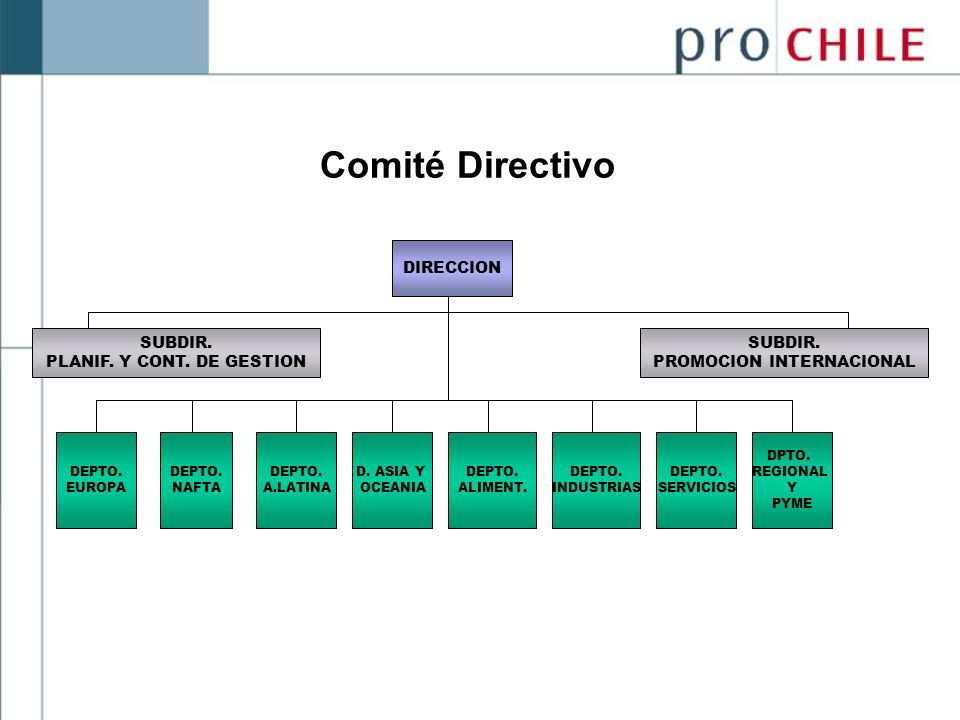 Comité Directivo DIRECCION SUBDIR. PLANIF. Y CONT. DE GESTION SUBDIR.
