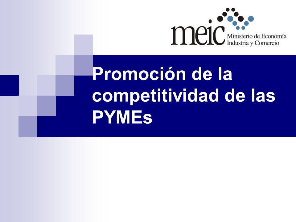 Promoción de la competitividad de las PYMEs