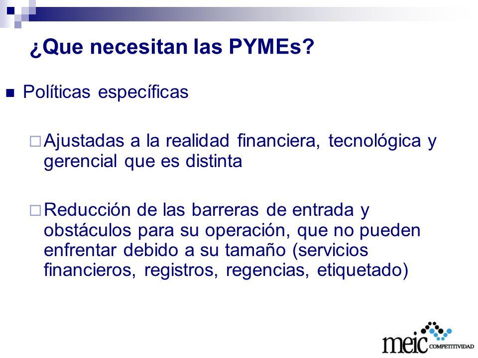 ¿Que necesitan las PYMEs
