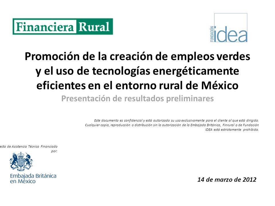 Promoción de la creación de empleos verdes y el uso de tecnologías energéticamente eficientes en el entorno rural de México Presentación de resultados preliminares