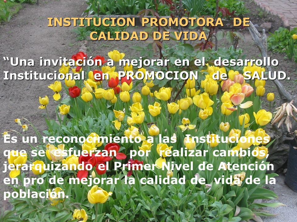 INSTITUCION PROMOTORA DE CALIDAD DE VIDA