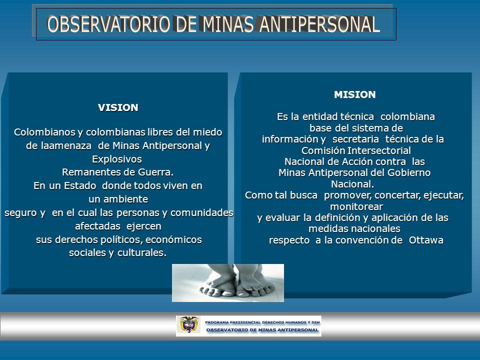 OBSERVATORIO DE MINAS ANTIPERSONAL