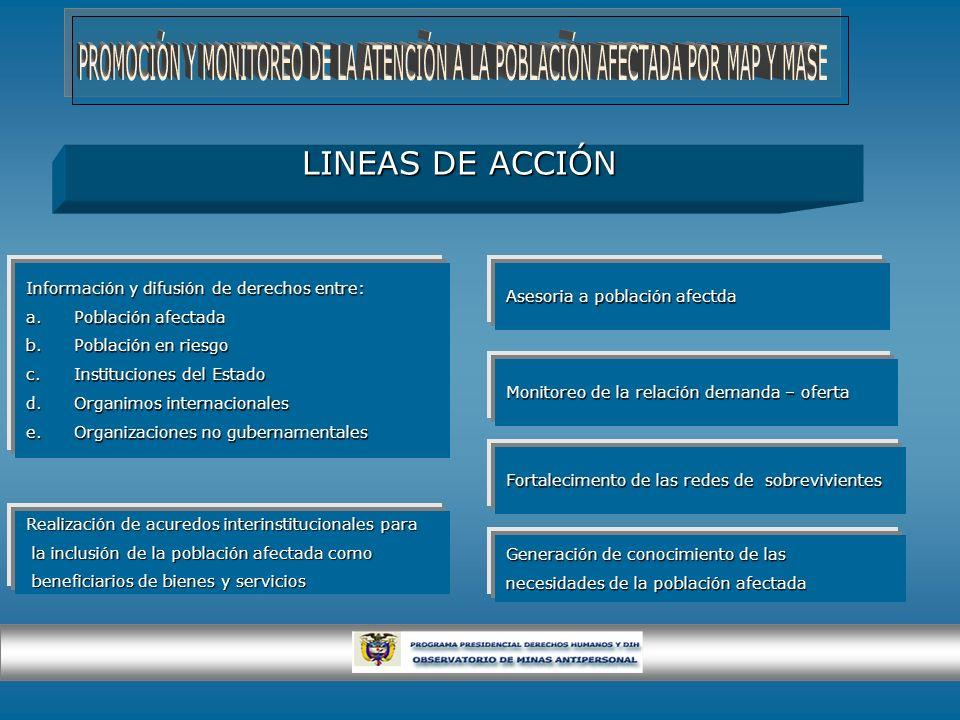 PROMOCIÓN Y MONITOREO DE LA ATENCIÓN A LA POBLACIÓN AFECTADA POR MAP Y MASE