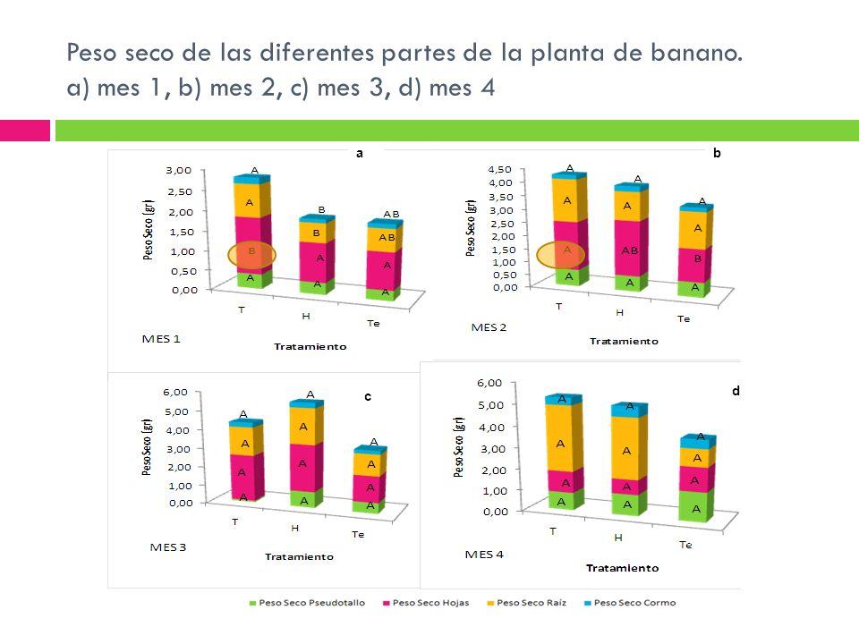 Peso seco de las diferentes partes de la planta de banano