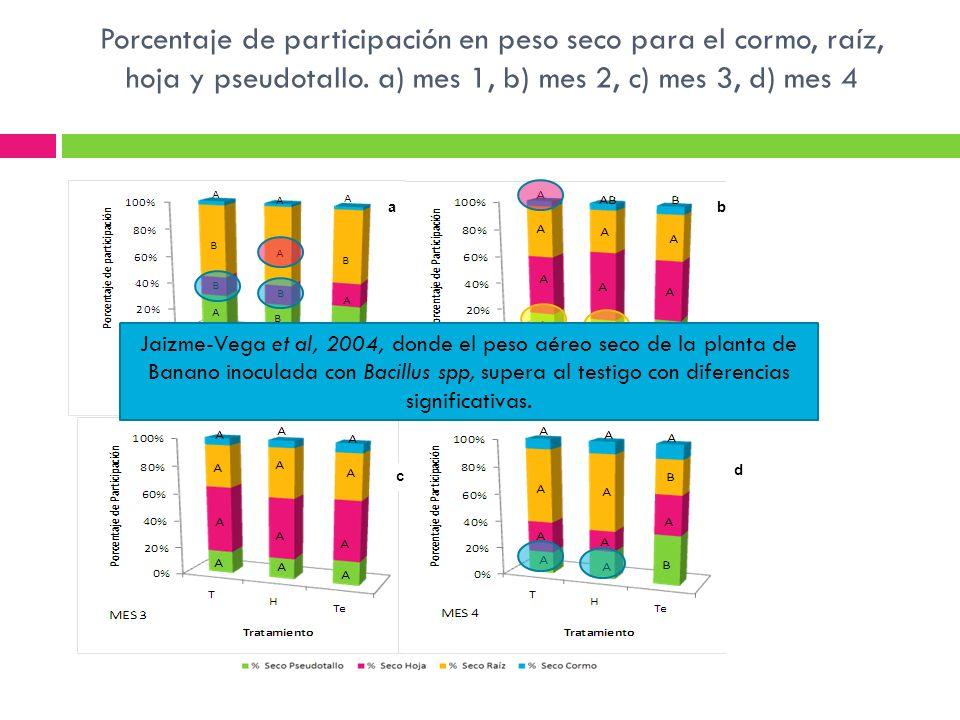 Porcentaje de participación en peso seco para el cormo, raíz, hoja y pseudotallo. a) mes 1, b) mes 2, c) mes 3, d) mes 4