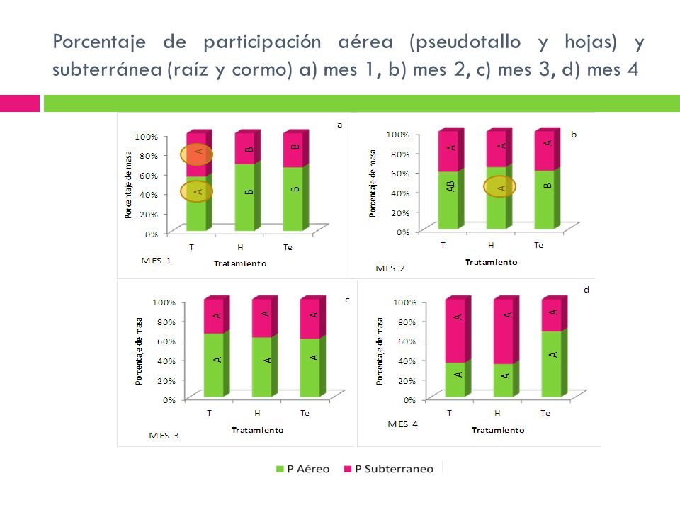 Porcentaje de participación aérea (pseudotallo y hojas) y subterránea (raíz y cormo) a) mes 1, b) mes 2, c) mes 3, d) mes 4