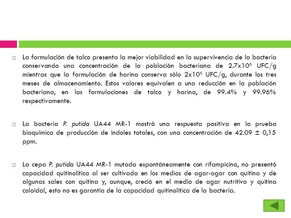 La formulación de talco presenta la mejor viabilidad en la supervivencia de la bacteria conservando una concentración de la población bacteriana de 2.7x106 UFC/g mientras que la formulación de harina conserva sólo 2x106 UFC/g, durante los tres meses de almacenamiento. Estos valores equivalen a una reducción en la población bacteriana, en las formulaciones de talco y harina, de 99.4% y 99.96% respectivamente.