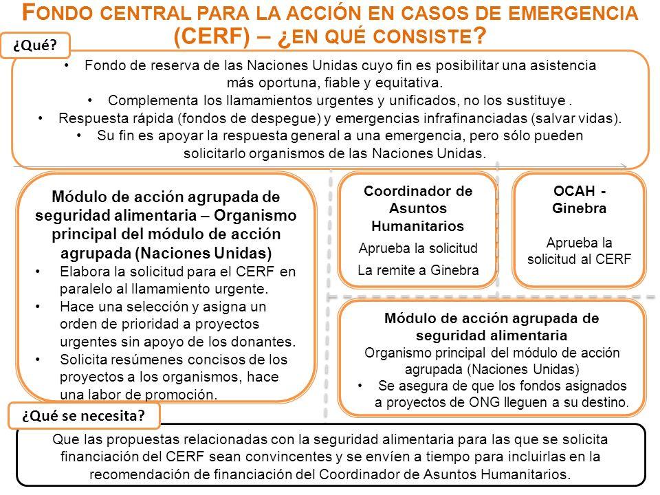 Fondo central para la acción en casos de emergencia (CERF) – ¿en qué consiste