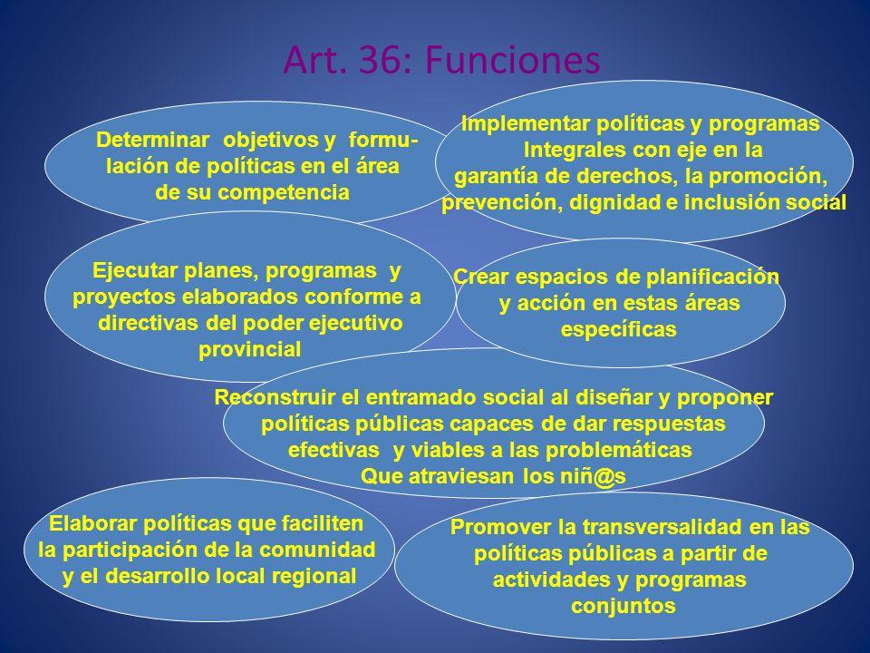 Art. 36: Funciones Implementar políticas y programas
