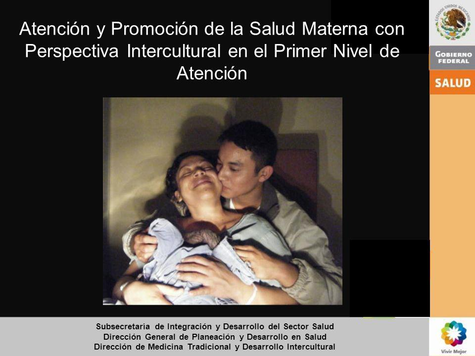 Atención y Promoción de la Salud Materna con Perspectiva Intercultural en el Primer Nivel de Atención