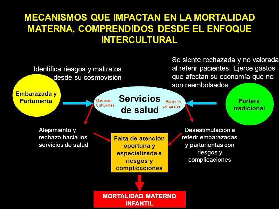 MECANISMOS QUE IMPACTAN EN LA MORTALIDAD MATERNA, COMPRENDIDOS DESDE EL ENFOQUE INTERCULTURAL