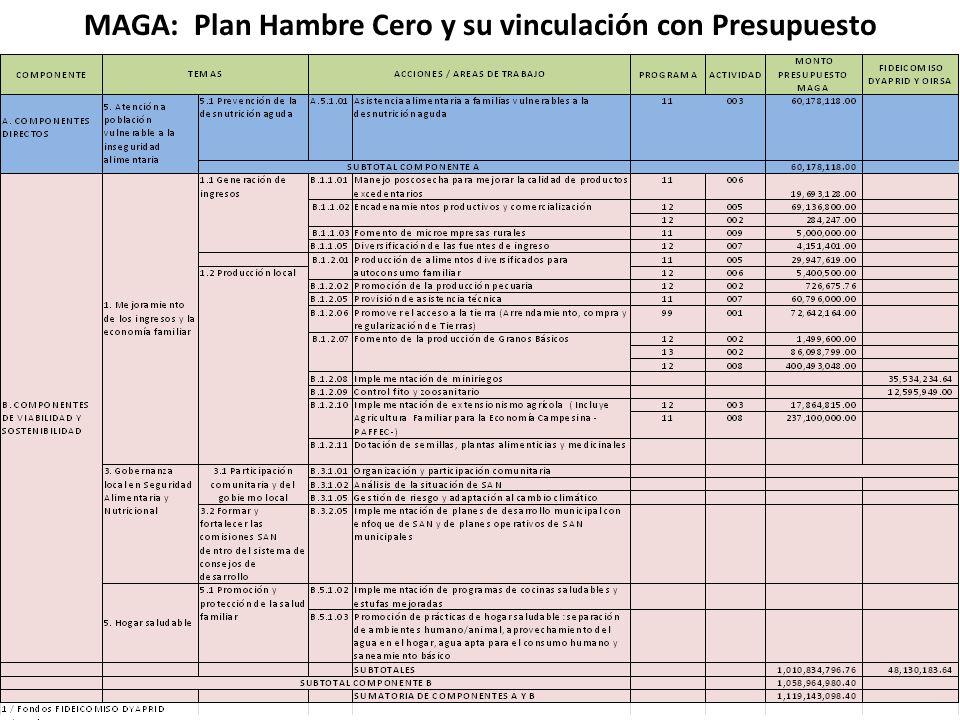 MAGA: Plan Hambre Cero y su vinculación con Presupuesto