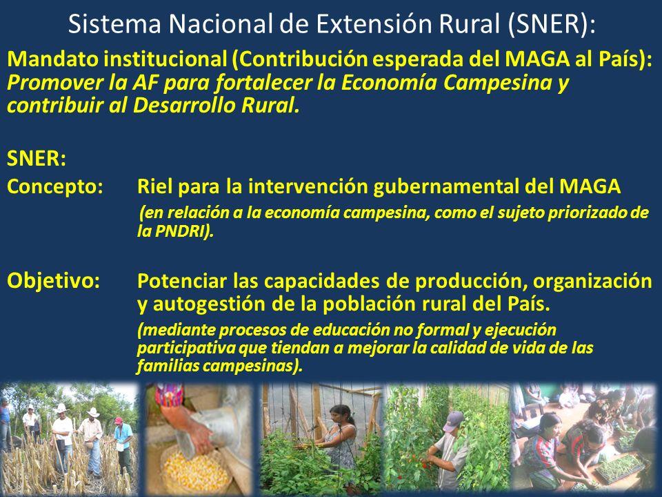Sistema Nacional de Extensión Rural (SNER):