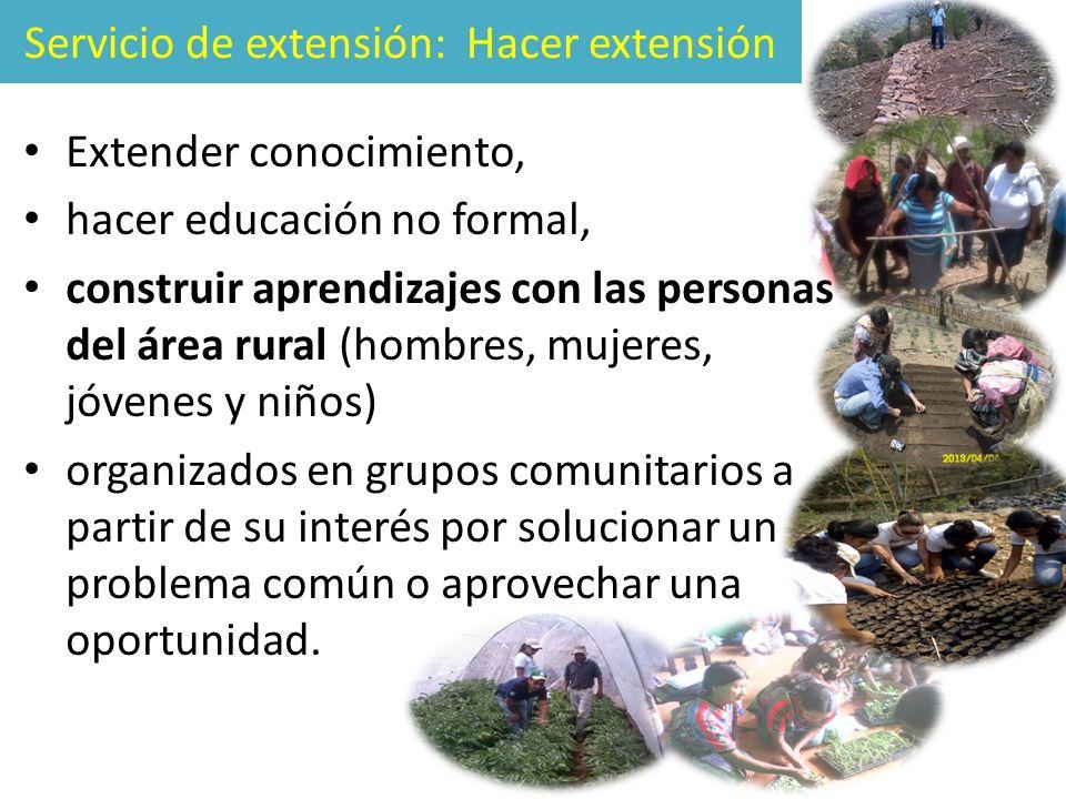 Servicio de extensión: Hacer extensión