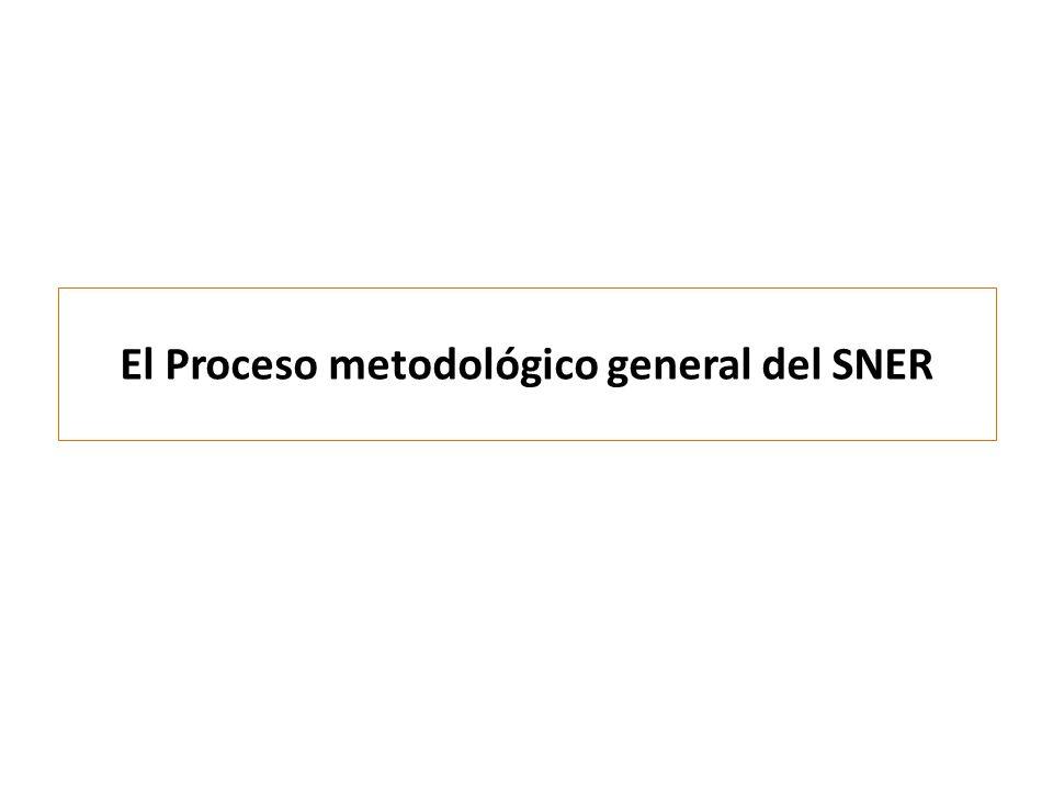 El Proceso metodológico general del SNER