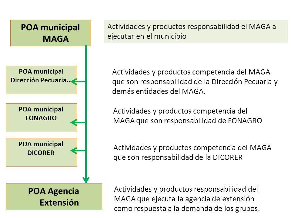 POA municipal Dirección Pecuaria…