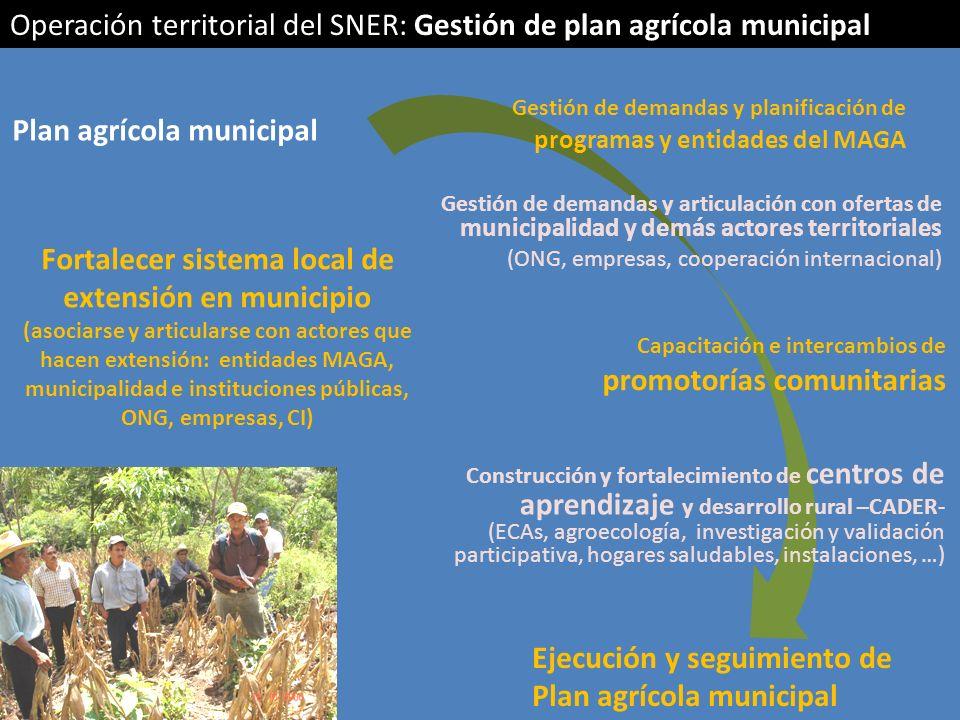 Fortalecer sistema local de extensión en municipio