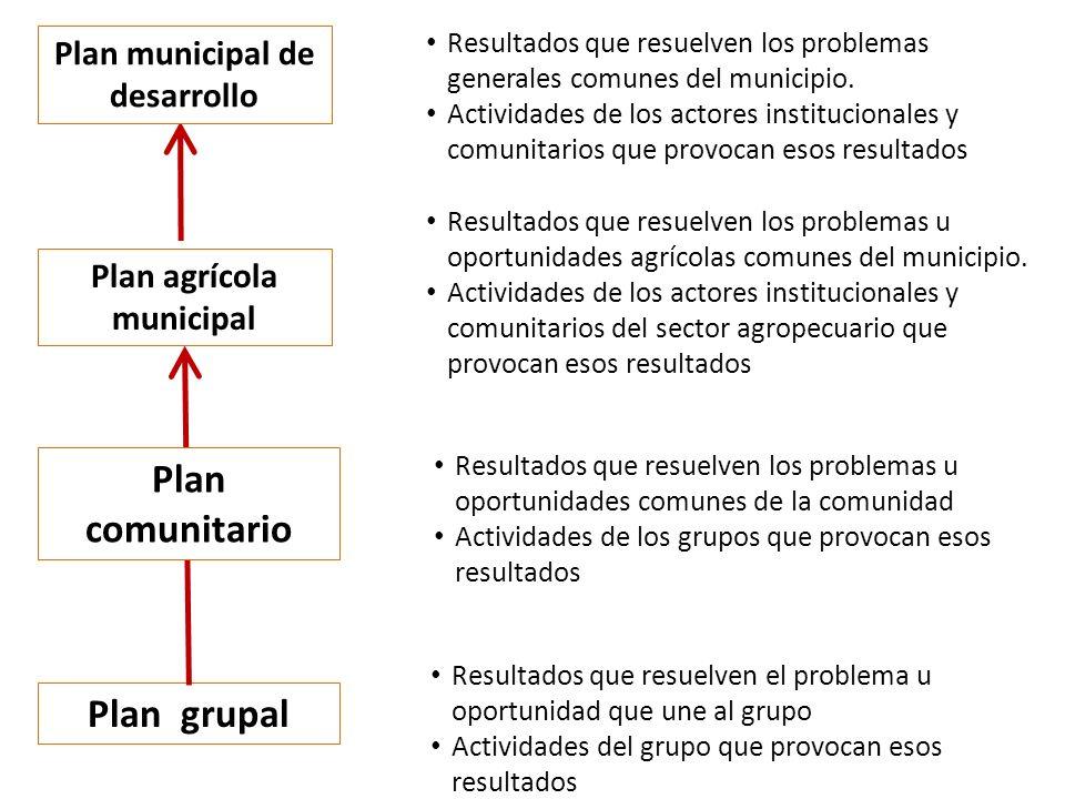 Plan municipal de desarrollo Plan agrícola municipal