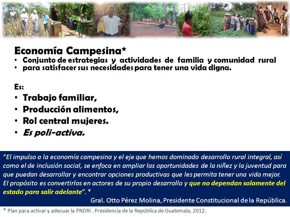 Economía Campesina* Trabajo familiar, Producción alimentos,