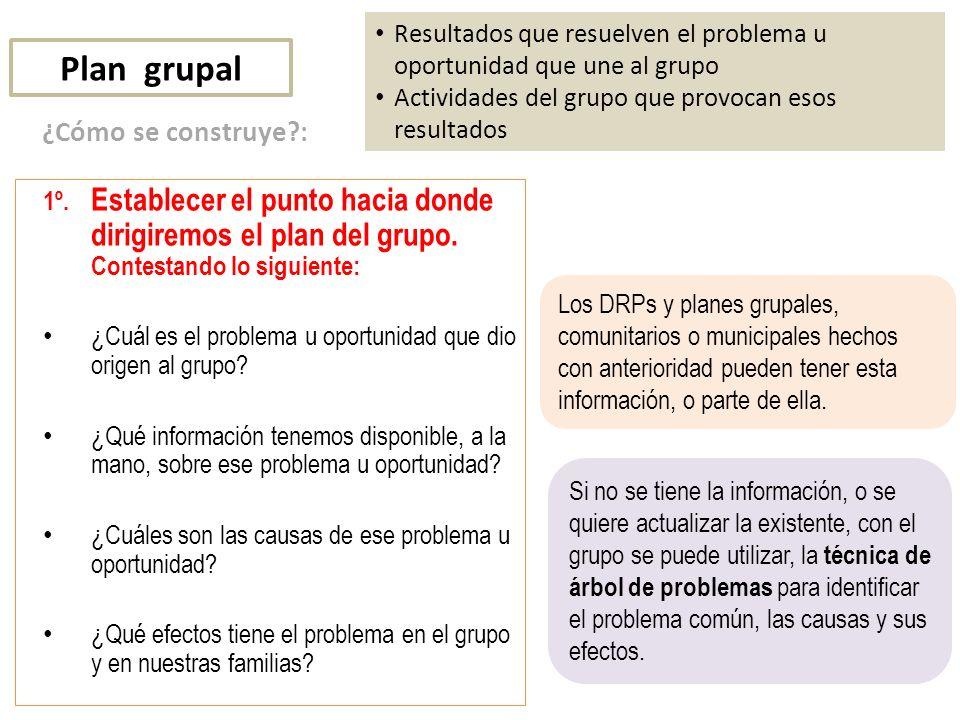 Plan grupal ¿Cómo se construye :