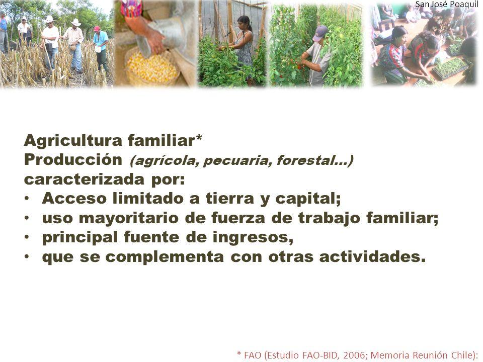 Agricultura familiar*