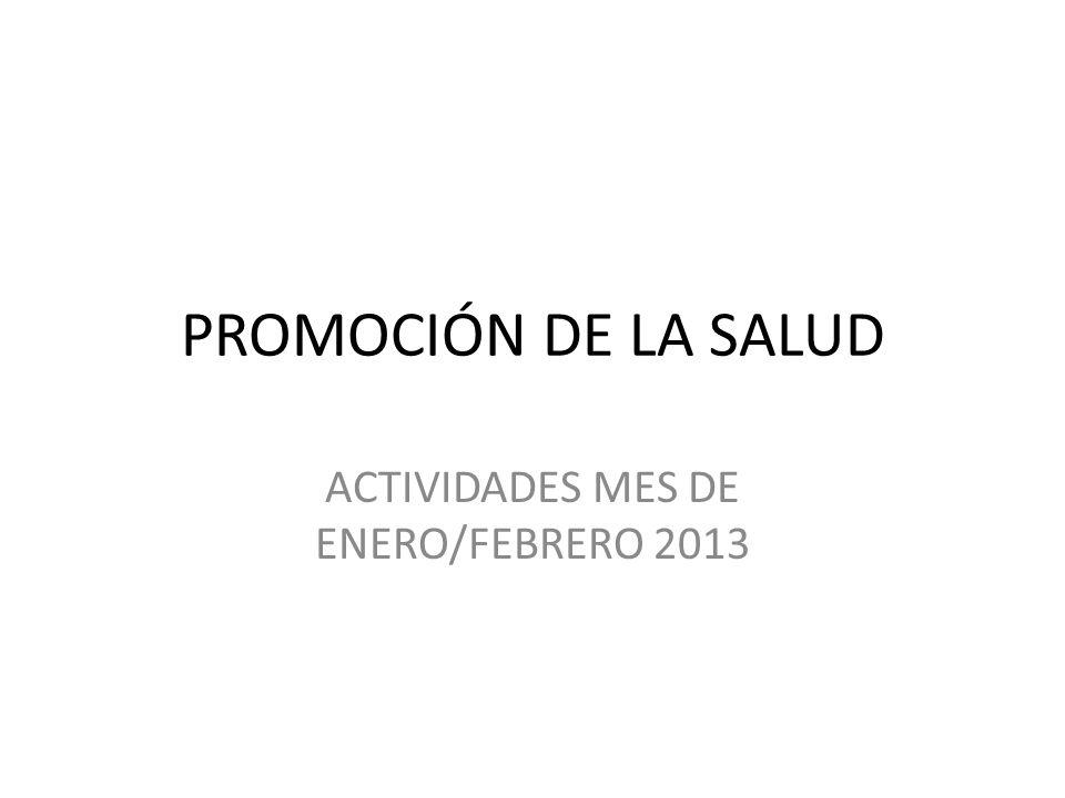 ACTIVIDADES MES DE ENERO/FEBRERO 2013