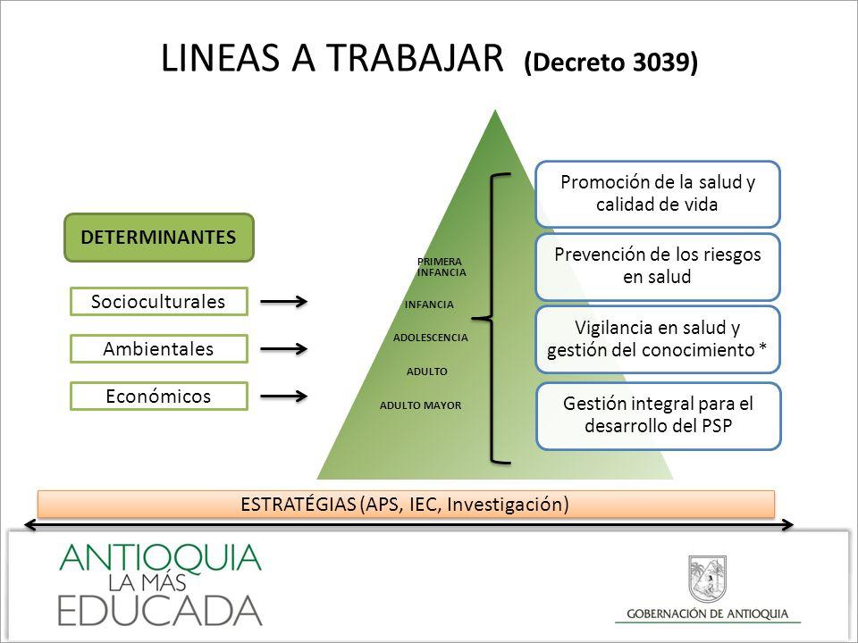 LINEAS A TRABAJAR (Decreto 3039)
