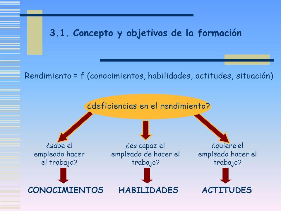 3.1. Concepto y objetivos de la formación