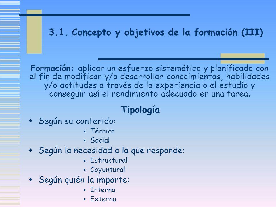 3.1. Concepto y objetivos de la formación (III)